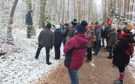 Kiever Winterwanderung 2019